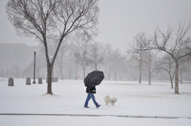 2014 Jan Snow Storm 2
