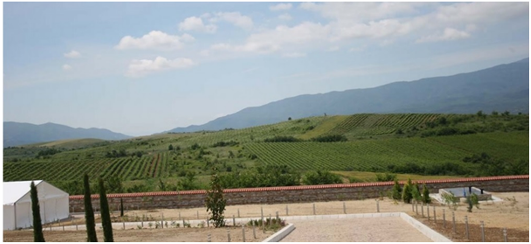 BMO - Bulgaria Wine - Art - Article 2 - Photo 3