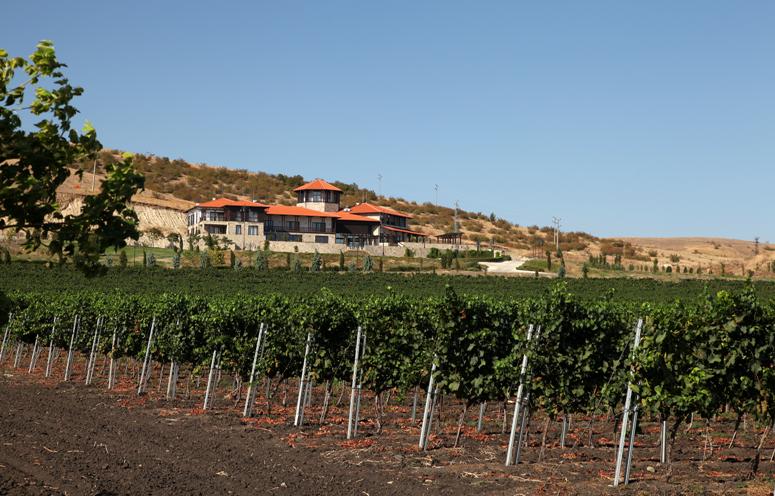 bmo-bulgaria-wine-land-2