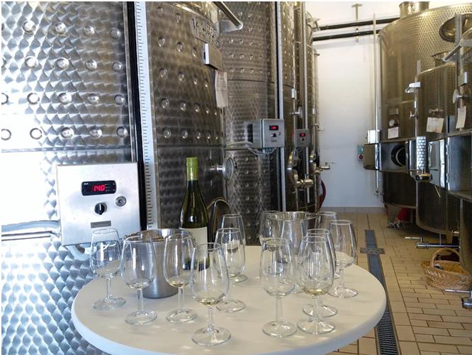 BMO - Bulgaria Wine - Art - Article 8 - Photo 5 Collage
